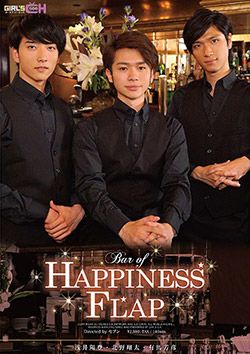 BAR OF HAPPINESS FLAP (DVD-V)