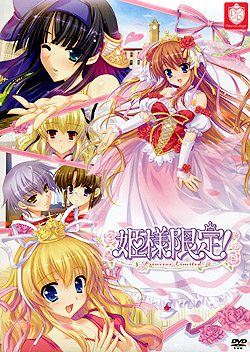 姫様限定!〜Princess Limited〜(DVD-ROM)