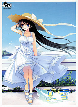 夏雪-summer snow-(DVD-ROM)
