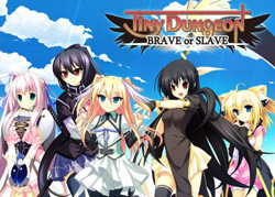 Tiny Dungeon -BRAVE or SLAVE-(DVD-ROM)