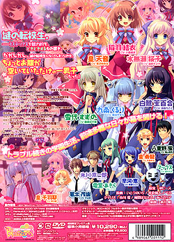 Flyable Heart �\��L�����y�[���������v���~�A���ŁiDVD-ROM�j